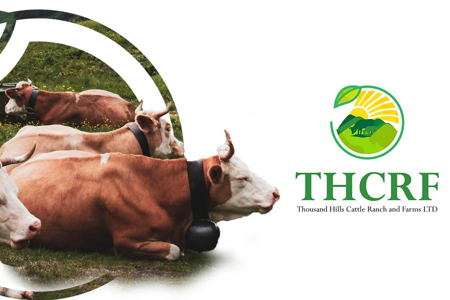 Thcrf Thousand hills cattle ranch and farms limited brand identity logo and company profile